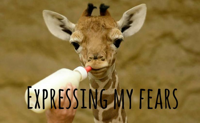 baby giraffe milk bottle feeding