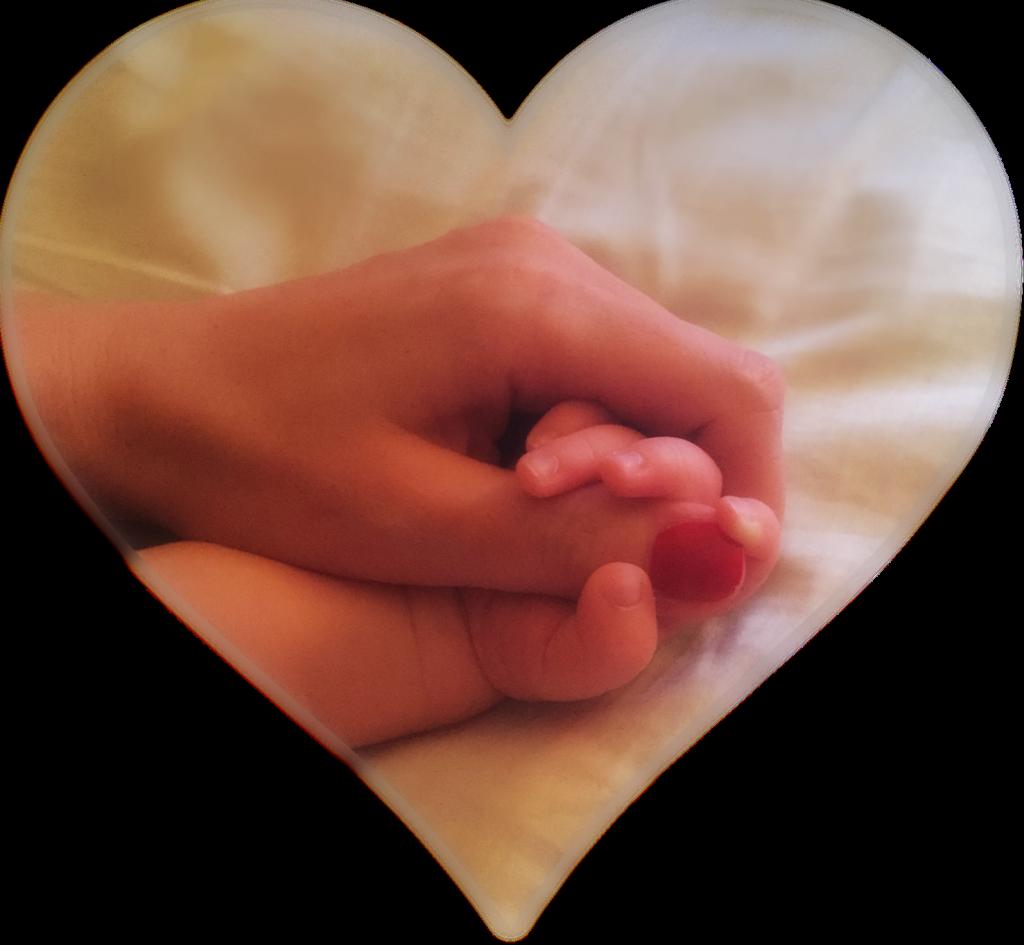 hands baby heart