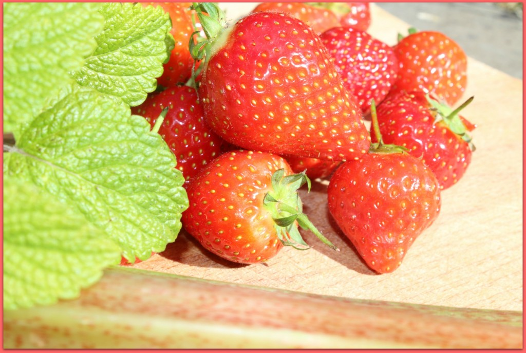 strawberry mint rhubarb