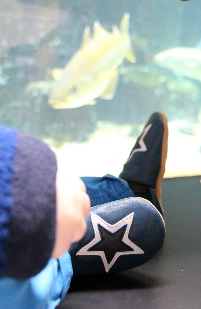 Testing out the cute Dotty Fish at the aquarium