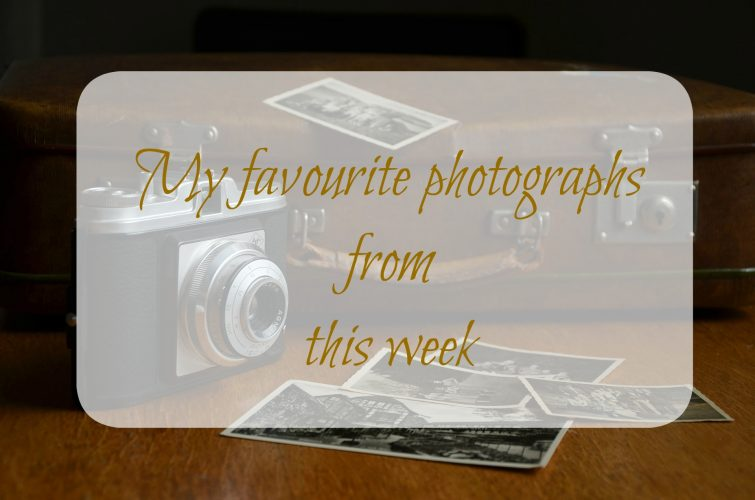My new Saturday series on snaps from the past week!