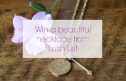 Win a beautiful statement necklace from Lush List over on the blog!