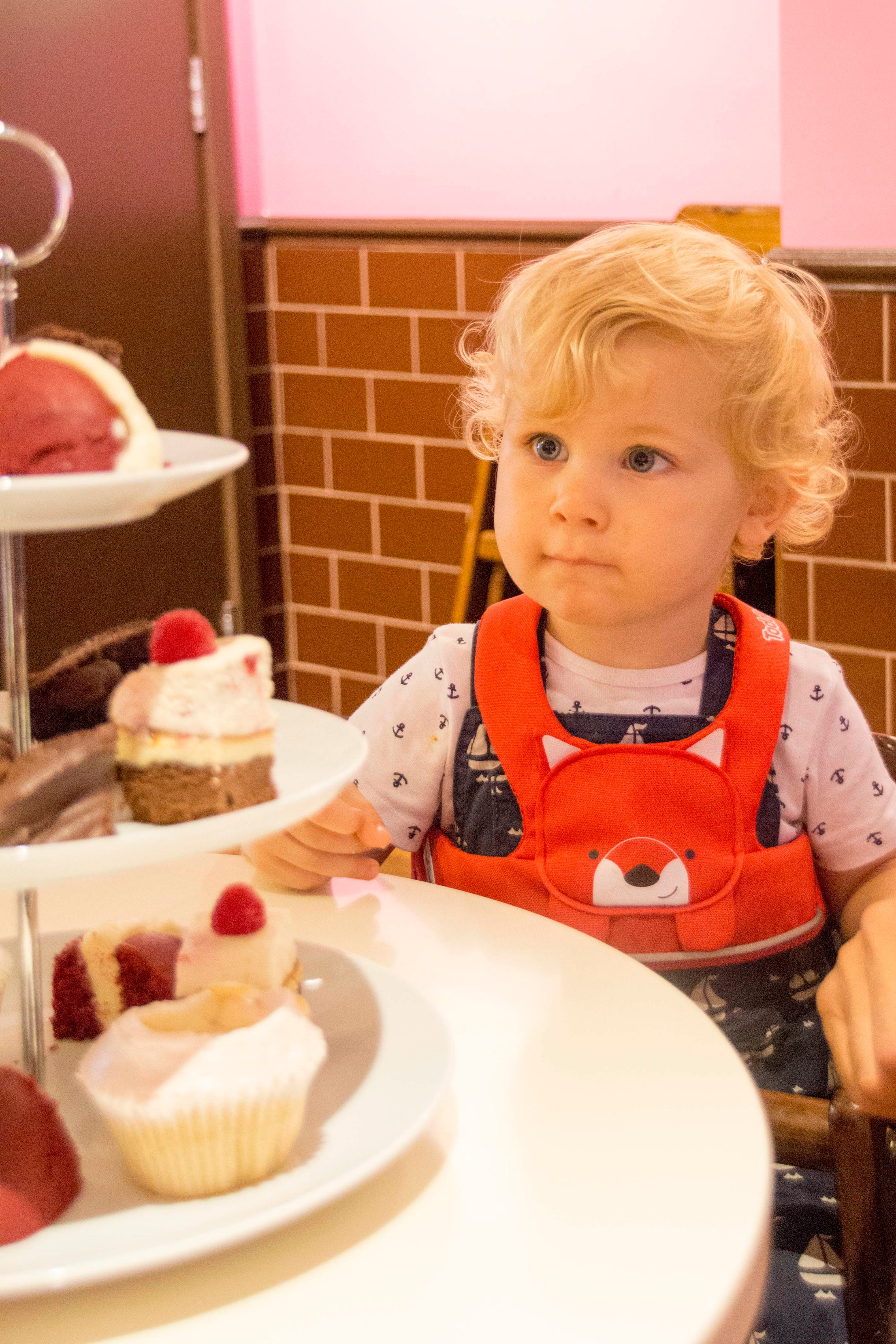Boy starring at cakes