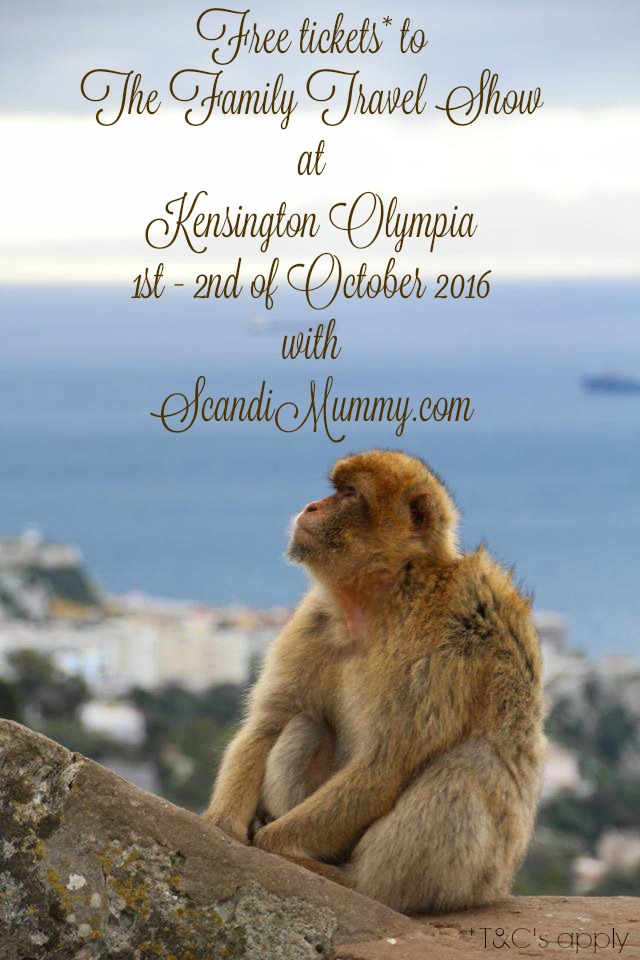 scandimummy-monkey-gibraltar