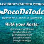 #UnPocoDeTodoUK – WEEK 7 – FEATURED PHOTOS